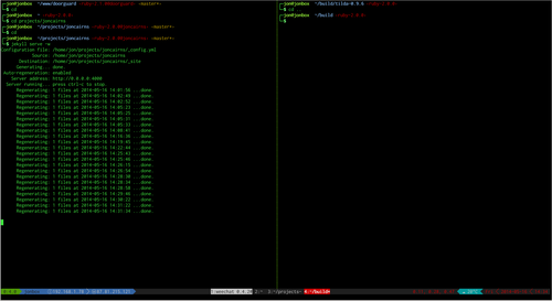 Screenshot showing my terminal configuration